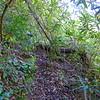 Steep, steep climb
