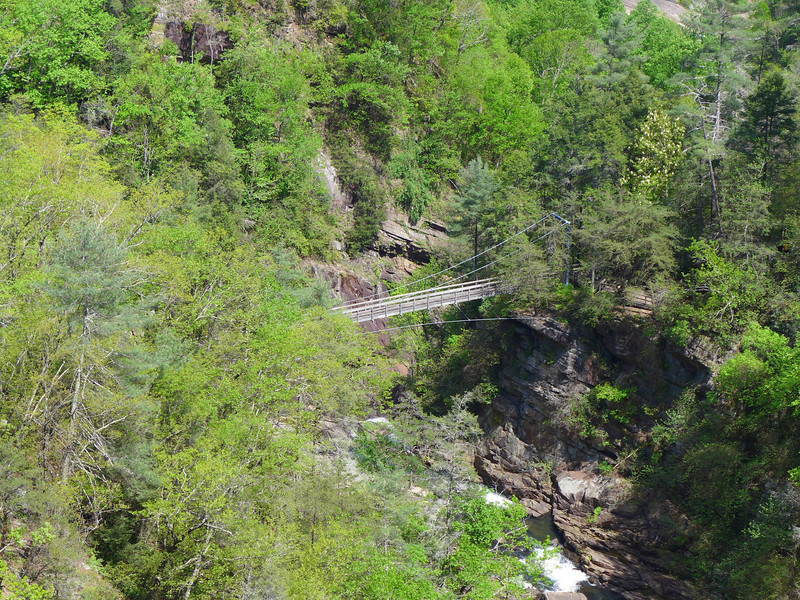 "<h1>Suspension Bridge</h1>A distant shot of the suspension bridge over the Tallulah River, shot from the South Rim.   For an up close view, <b><u><a href=""http://nc-hiker.smugmug.com/HikingTrips-6/Tallulah-Gorge/38786630_Ww7rs4#!i=3205957296&k=CgjVQ5g"">see this photo</a></u></b>."