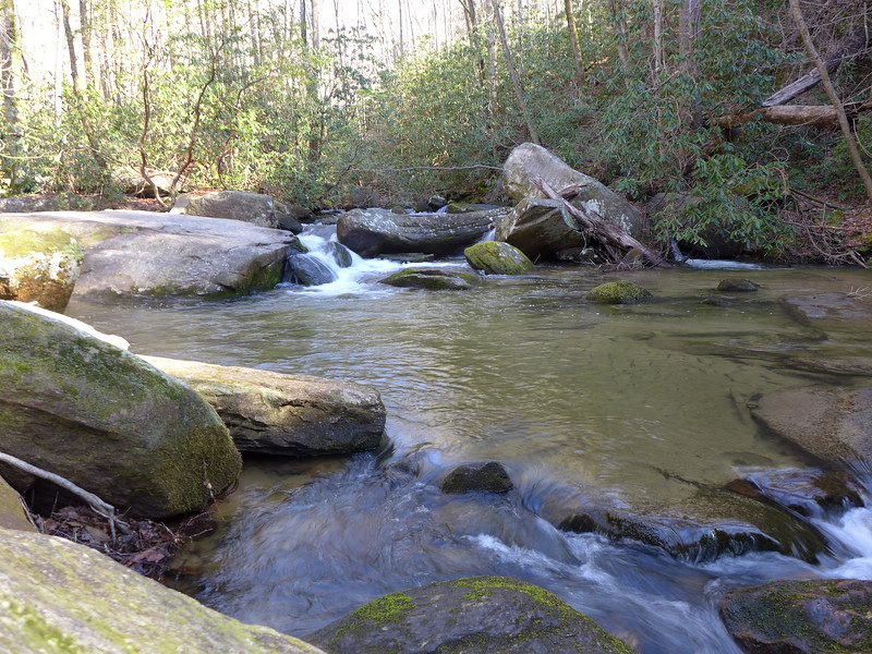 <h1>Reedy Cove Creek</h1>....along the 1/3 mile trail to the base of the falls.
