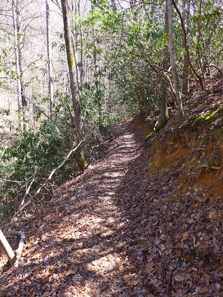 <h1>Trail</h1>...that leads to the top of Twin Falls.