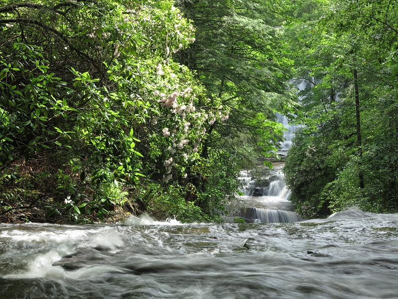 Conestee Falls