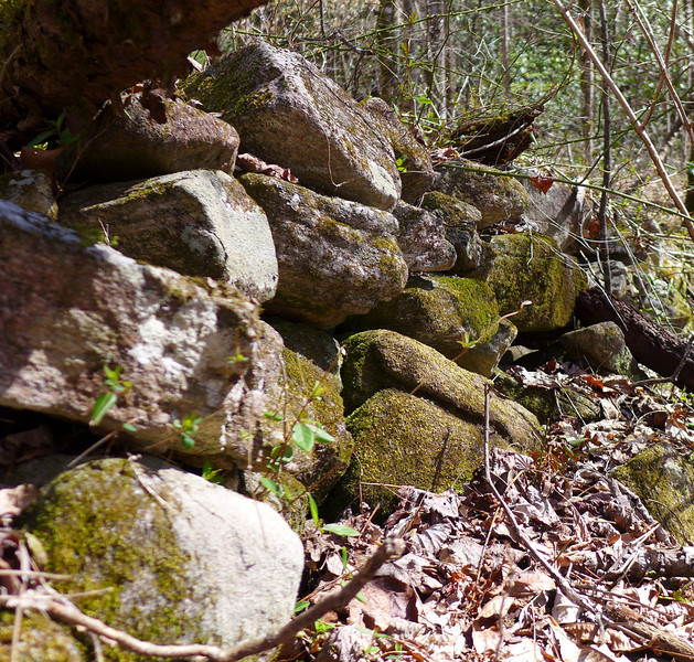 <h1>Close up</h1>...of one of the rock walls.