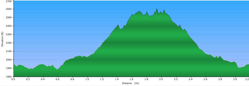 <h1>Elevation Profile</h1>