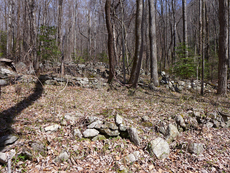 <h1>Rock Walls</h1>As we made our way up the hillside following the tributary upstream, we came upon this interesting area that had numerous sections of rock walls.    Andy counted 8 different walls, each a little higher up the hillside than the one before.
