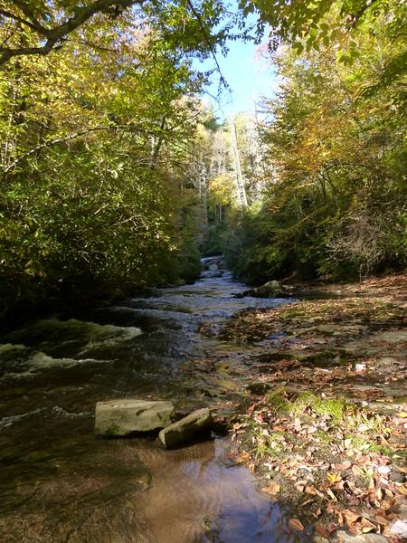 Heading upstream towards Wheelchair Accessible Falls
