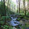 <h1>Wolf Creek</h1>