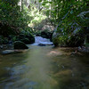 <h1>Rapids</h1>...in Wolf Creek.