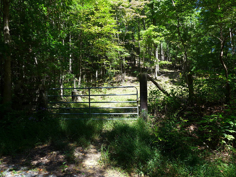 This gated pasture is immediately to your right as you arrive here to the top of Shut In Road.