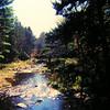 Northville-Placid Trail, Hamilton Lake Stream, oct 13, 1989 PICT9243