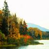 Northville-Placid Trail, Cedar River Flow, oct 2, 1987