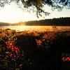 Northville-Placid Trail, sunrise, Mud Lake, oct 13, 1989