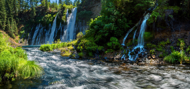 Burney Falls plunges 129 feet into a pool 22 feet deep. The water temperature is usually between 42 and 48 degrees with a daily flow estimated at 100 million gallons. This image is formatted to be a large wall panorama, up to 10 feet wide.