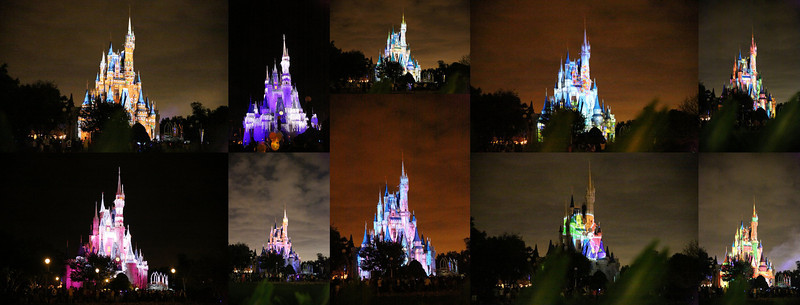 Walt Disney World 2014
