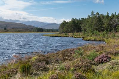 Loch Chnuic, a stiff breeze!