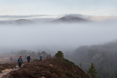 Sheperd's Hill looming above the clouds