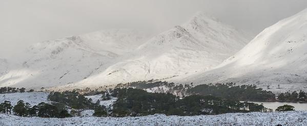 Glen Affric January 2019