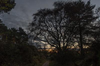 Deepening dusk