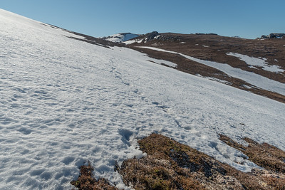 An icy slope, much more slippery than it looks like
