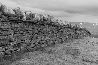 Derelict drystane wall - some parts look as new