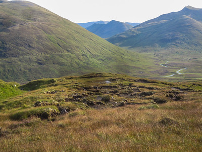 Looking back at peat hags