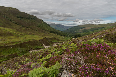 Looking back along Gleann na Sgualb and river Lael