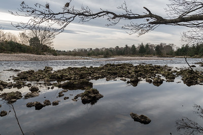 Findhorn River downstream April 2020