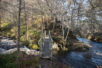 A slender wobbly bridge