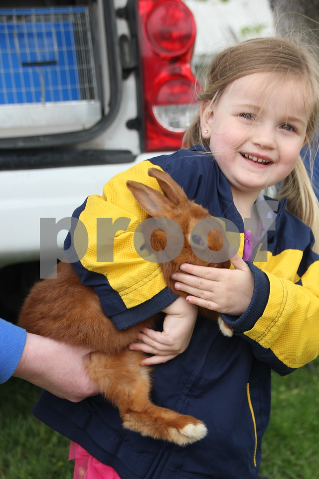Saturday, May 7. 2016 the Webster County Fairgrounds in Fort Dodge held the Hillbilly Sale Flea Market. Pictured here is: Rylie Brockman with her new pet rabbit her family bought her at  the event.