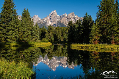 Schwabacher Landing - Beaver Pond Reflections