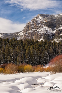 Along Soda Butte Creek