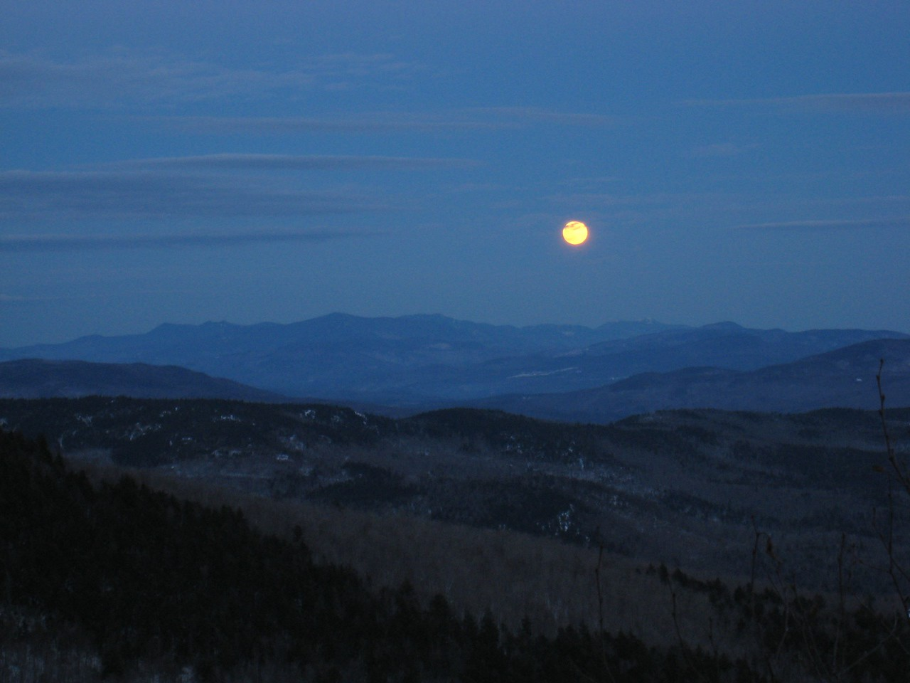 Moonrise on Cathedral Forest Trail