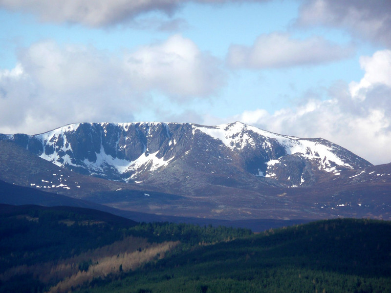 A distant Lochnagar from the top of Craigendarroch above Ballater