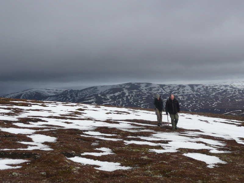 On the remote expansive plateau of Leathad an Toadhain, with Mullach Clach a'Bhlair in the background