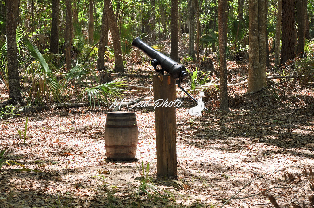 cannon in the georgia woods