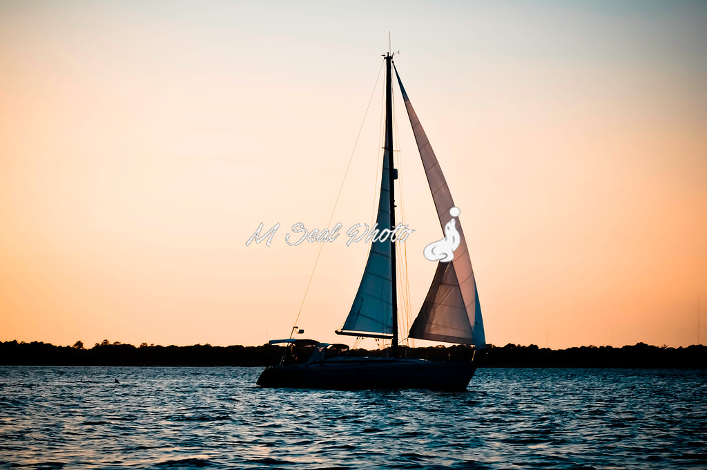 sailing into sunset