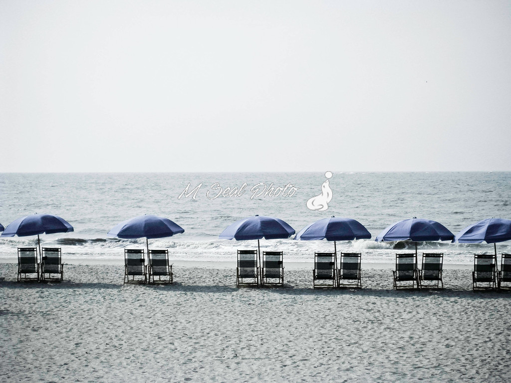 umbrellas in the sand, westin, hhi sc