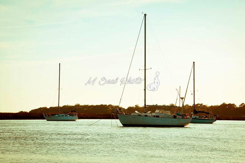 sailboats in the harbor river, hhi sc