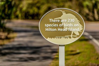 HH_Signs_011