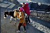 Kunga Chorden's parents leave his home in Komic for the market at Kaza