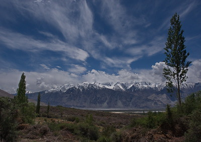 Sumur, Nubra Valley