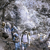 Infra red picture of my fellow trekkers ascending to Tengboche