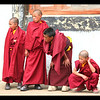 Phyang monastery; trainee monks