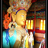 The giant Buddha of Thikse monastery