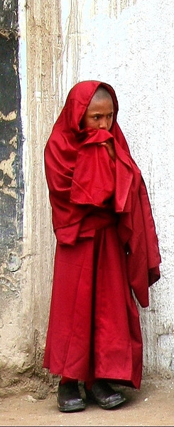 Phyang monastery; trainee monk