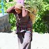 woman field worker
