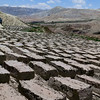 Mud-bricks; the end of the production line. Lo Manthang in the background.