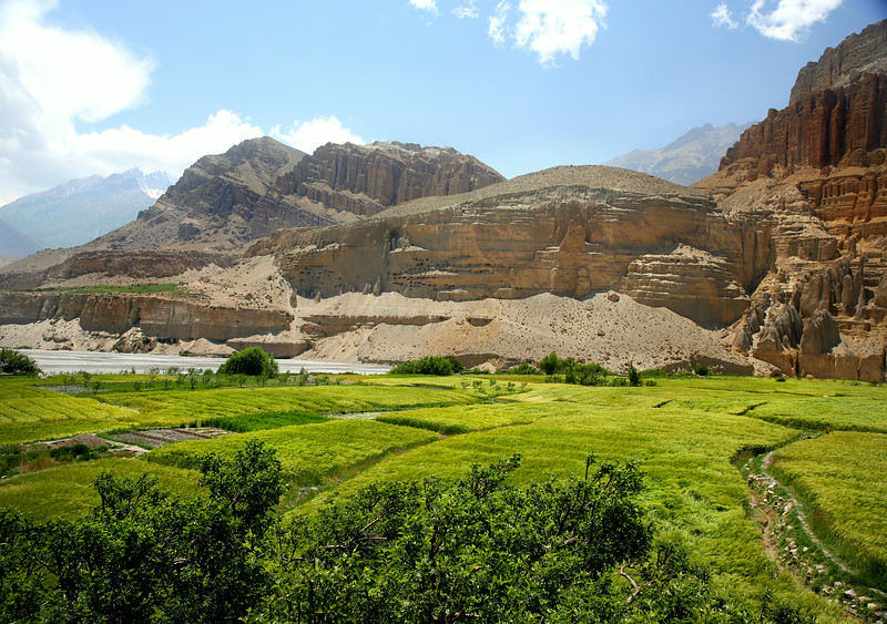 Chhusang fields