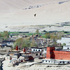 A black kite circles over the walled city of Lo Manthang.