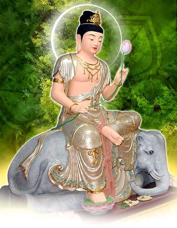 Bo Tat Van Thu - Pho Hien