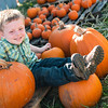 Pumpkin Portraits 2012